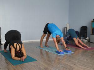 Yoga Session — Rose's Poses